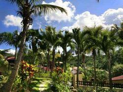 Habitation Grande Anse : Hotel  Guadeloupe
